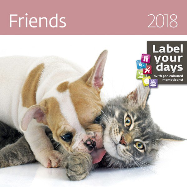Wall calendars 2018 - Friends