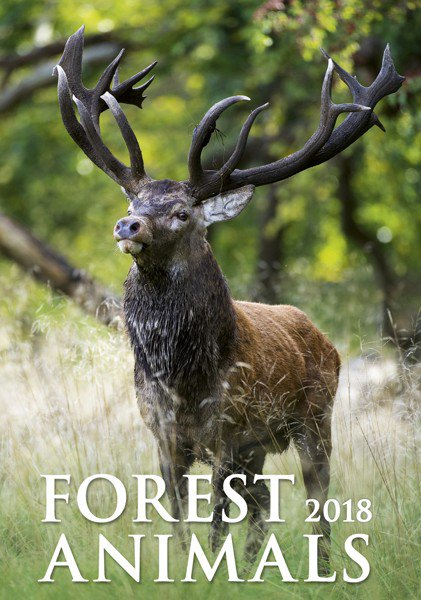 Wall calendars 2018 - Forest Animals
