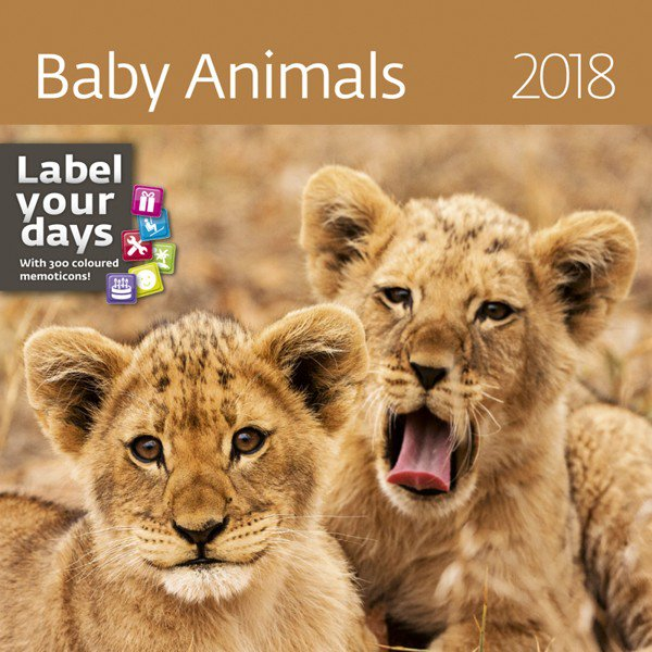 Wall calendars 2018 - Baby Animals